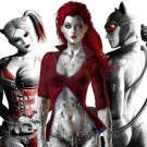 Catwoman Harley Quinn Poison Ivy Wall Print POSTER Decor 32x24