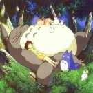 My Neighbor Totoro Animation Wall Print POSTER Decor 32x24
