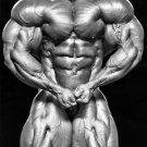 Phil Heath Bodybuilders Wall Print POSTER Decor 32x24