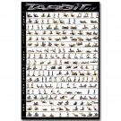 Home Workout Gym Set Bodybuilding Poster 32x24