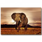 Wild Animals African Elephant Sunset Nature Poster 32x24