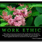 WORK ETHIC Motivational Quotes Art Poster 32x24
