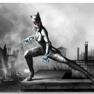 Catwoman Batman Arkham City Origin Game Art Poster 32x24