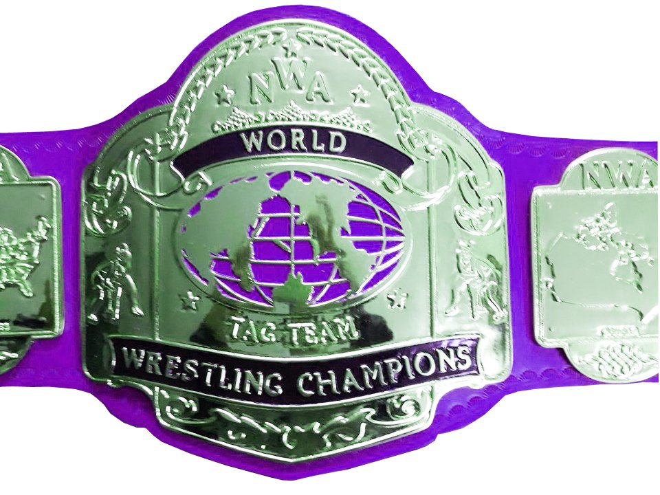 NWA TAG TEAM WORLD CHAMPION WRESTLING CHAMPIONSHIP BELT PURPLE LEATHER STRAP ADULT SIZE
