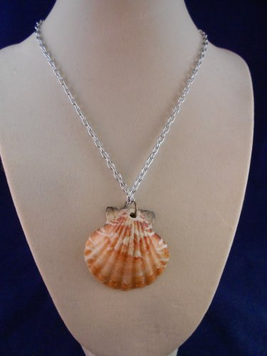 Fashion Jewelry, 16� Scallop Shell Pendant S123, Natural, Different and Unique