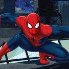 Spiderman Edible image Cake topper decoration