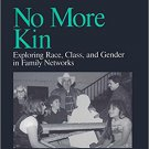 Ebook 978-0761901594 No More Kin: Exploring Race, Class, and Gender in Family Networks (Understan