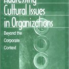 Ebook 978-0761905486 Addressing Cultural Issues in Organizations: Beyond the Corporate Context (W