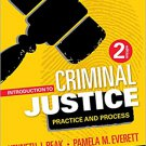 Ebook 978-1506305929 Introduction to Criminal Justice: Practice and Process