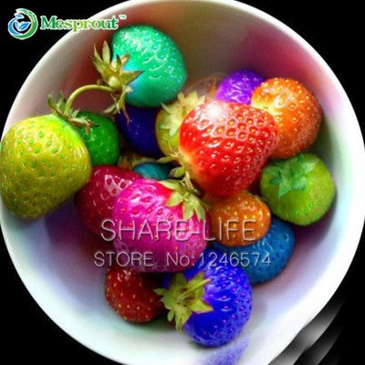 50PCS Rainbow Strawberry Fruit Seeds Multicolor Rainbow Strawberry Fruit Seeds