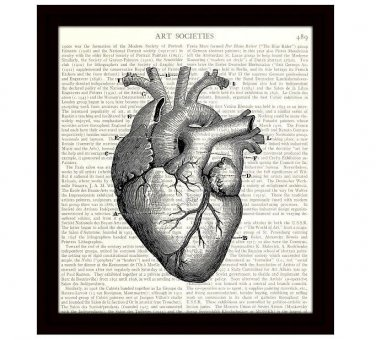 Heart Anatomy Dictionary Art Print, 8 x 10 Inches, Antique Medical Diagram, Free US Shipping