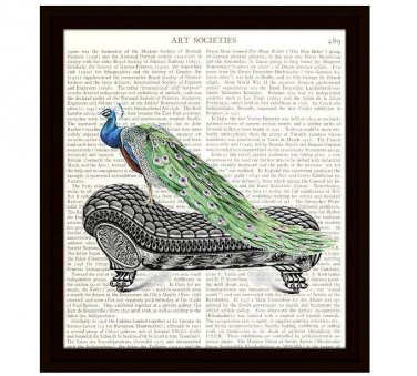 Peacock on a Couch 8 x 10 Dictionary Art Print Victorian Illustration Home Decor