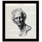 Anatomy 8 x 10 Dictionary Art Print Muscles of the Head and Neck Medical Science