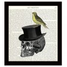 Dictionary Art Print Skull with Hat and Songbird 8 x 10 Collage Illustration