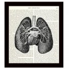 Anatomy 8 x 10 Dictionary Art Print Heart Lungs Victorian Medical Science Decor