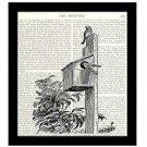 Dictionary Art Print 8 x 10 Birdhouse Birds Wildlife Nature Vintage Home Decor