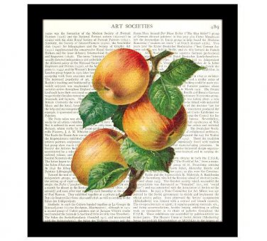 Kitchen Decor Dictionary Art Print 8 x 10 Apples Botanical Housewarming Gift