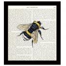 Dictionary Art Print 8 x 10 Bumble Bee Nature Illustration Home Decor