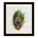 Dictionary Art Print 8 x 10 Colorful Peacock Feather Book Page Home Decor