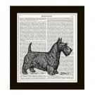 Scottish Terrier Dictionary Art Print 8 x 10 Vintage Dog Illustration Home Decor