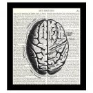 Brain 8 x 10 Dictionary Art Print Human Anatomy Medical Science Book Page