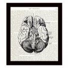 Human Brain 8 x 10 Dictionary Art Print Anatomy Medical Science Book Page