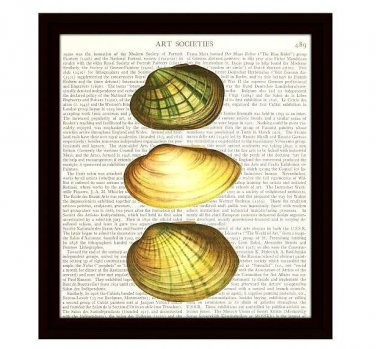 Nautical Dictionary Art Print 8 x 10 Three Seashells Collage Beach Home Decor