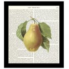 Pear Dictionary Art Print 8 x 10 Kitchen Decor Fruit Housewarming Gift Unframed