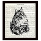 Cat Dictionary Art Print 8 x 10 Vintage Feline Illustration Housecat Home Decor