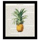 Pineapple Dictionary Art Print 8 x 10 Kitchen Art Home Decor Housewarming Gift