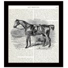 Horse Dictionary Art Print 8 x 10 Calvary Vintage Equestrian Home Decor