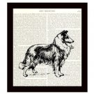 Collie Dictionary Art Print 8 x 10 Home Decor Vintage Dog Illustration