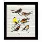 Birds Dictionary Art Print 8 x 10 Finches Songbirds Garden Vintage Home Decor