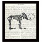 Dinosaur Dictionary Art Print 8 x 10 Mastodon Skeleton Archaeology Prehistoric