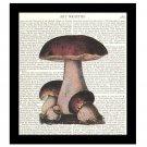 Dictionary Art Print 8 x 10 Cluster of Mushrooms Vintage Kitchen Decor Unframed