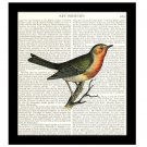 Robin 8 x 10 Dictionary Art Print Colorful Bird Illustration Home Decor