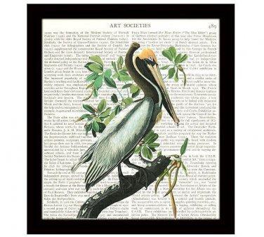 Audubon Dictionary Art Print 8 x 10 Brown Pelican Vintage Birds Wildlife Decor