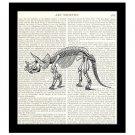 Dinosaur Dictionary Art Print 8 x 10 Triceratops Skeleton Natural History Decor