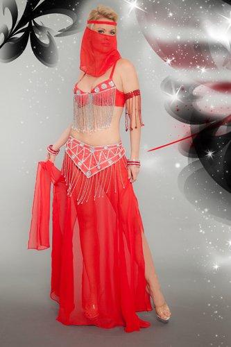 4 Piece Bollywood Genie Costume Set