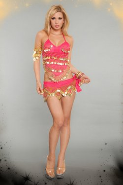 2 Piece Sexy Belly Dancer Costume Set