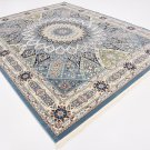top of the line  TURKISH AREA  rug Nain 8 x 10 superb quality perfect deal sale