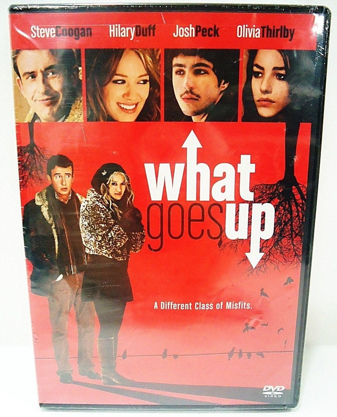 WHAT GOES UP - DVD - HILLARY DUFF - JOSH PECK - BRAND NEW - COMEDY - MOVIE