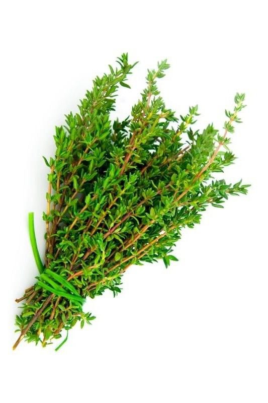 Thyme 1000 seeds Thymus vulgaris  Certified Organic * herb ez grow * *SHIPPING FROM US* CombSH E41
