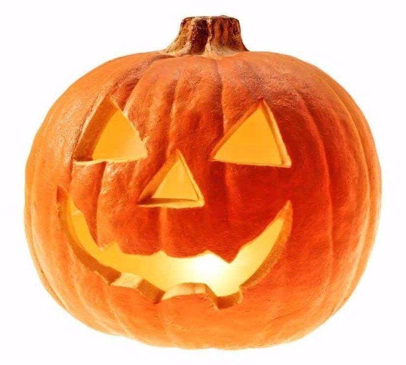 Jack O' Lantern Pumpkin 25 seeds *DIY Halloween decorate * Heirloom * *SHIPPING FROM US* CombSH J44