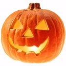Jack O' Lantern Pumpkin 25 seeds *DIY Halloween decorate * Heirloom * *SHIPPING FROM US* CombSH J44