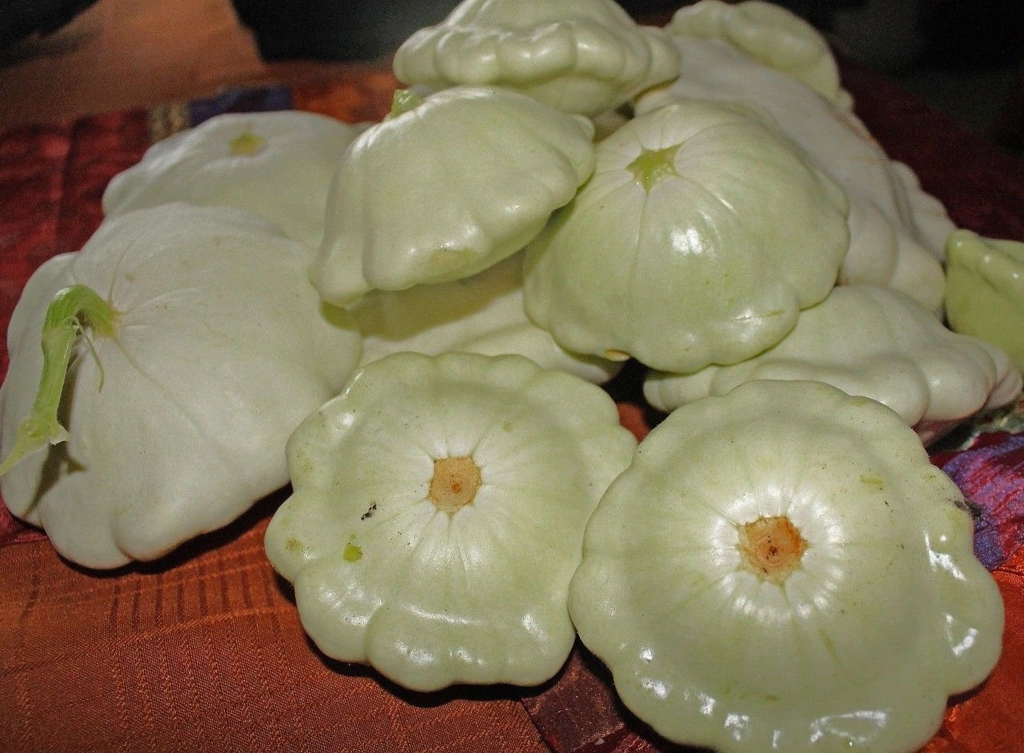 Green tint Scallop Bush Squash pattypan 25 seeds * Heirloom *Non GMO* *SHIPPING FROM US* CombSH G35