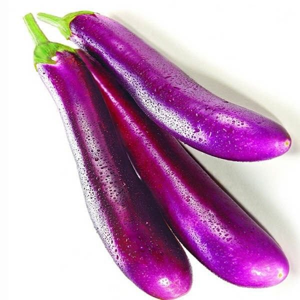 Long purple Eggplant 250 seeds * NON GMO * ez grow * E65