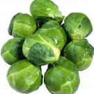 Brussels Sprouts 1000 seeds * Non GMO * ez grow * *SHIPPING FROM US* CombSH E18