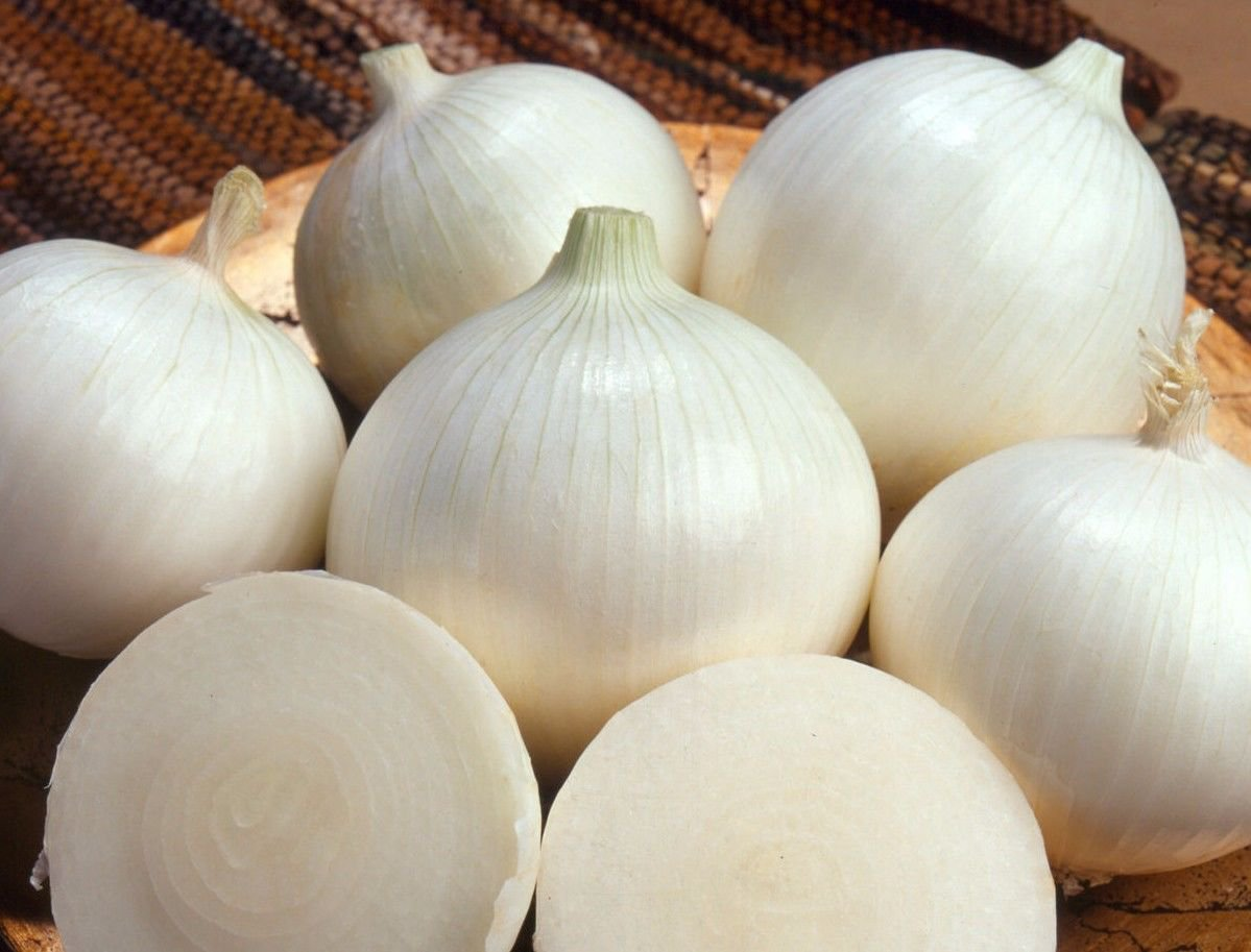 (Long day) White Sweet Spanish onion 250 seeds * NON GMO * ez grow * *SHIPPING FROM US* CombSH I23