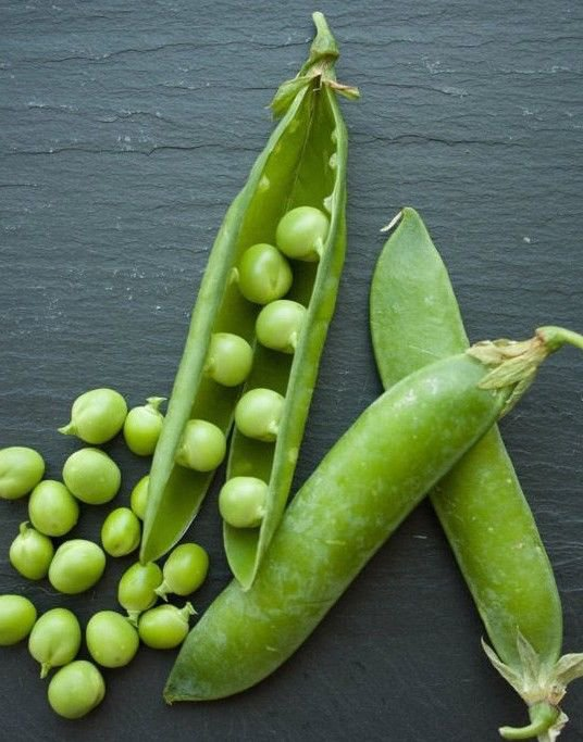 Snow Pea Sugar Snap 50 seeds Pisum sativum * Heirloom * Non GMO * *SHIPPING FROM US* CombSH G32